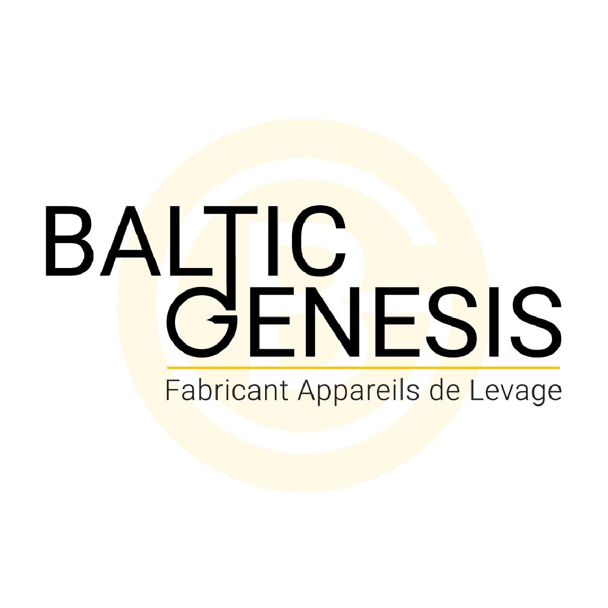 Création logo et site web pour fabricant industriel BALTIC-GENESIS - Lyon