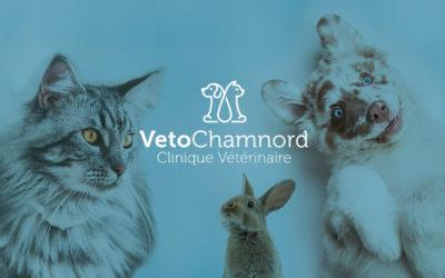 Création de logo et enseigne pour la Clinique Vétérinaire | Véto Chamnord | Chambéry – Savoie