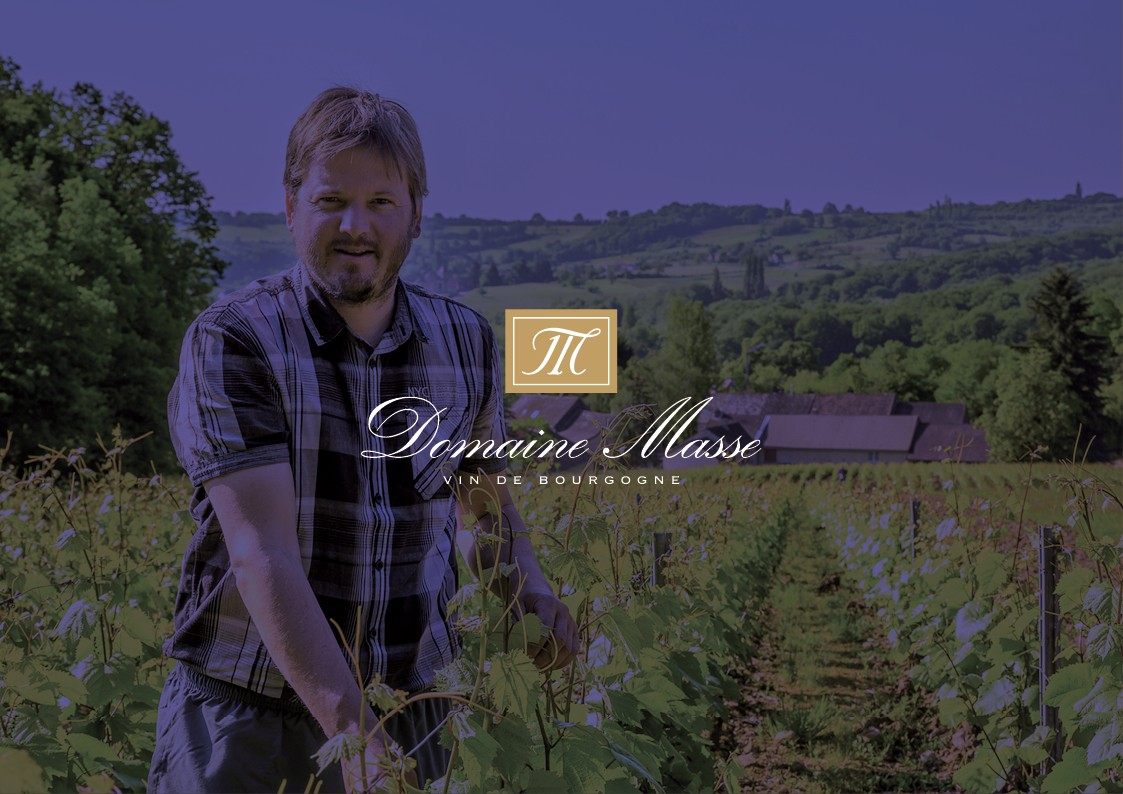 Création de site internet Domaine viticole Masse à Givry en Bourgogne